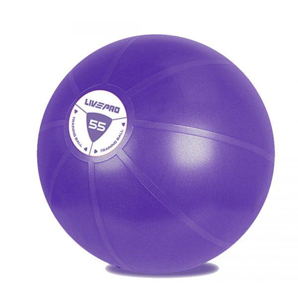 BALON FLEXIBLE DE GIMNASIA 55 CM (Gym Ball)